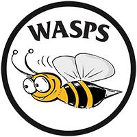 Wasps Link club